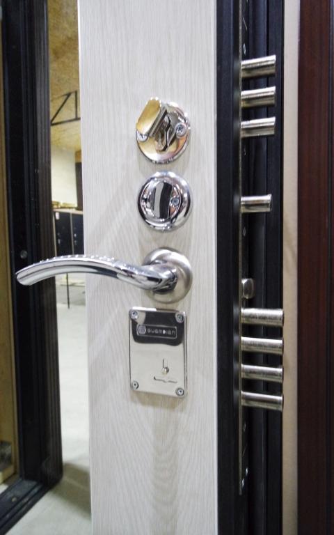 Дверь Гарда S5 (Garda S5 с зеркалом)